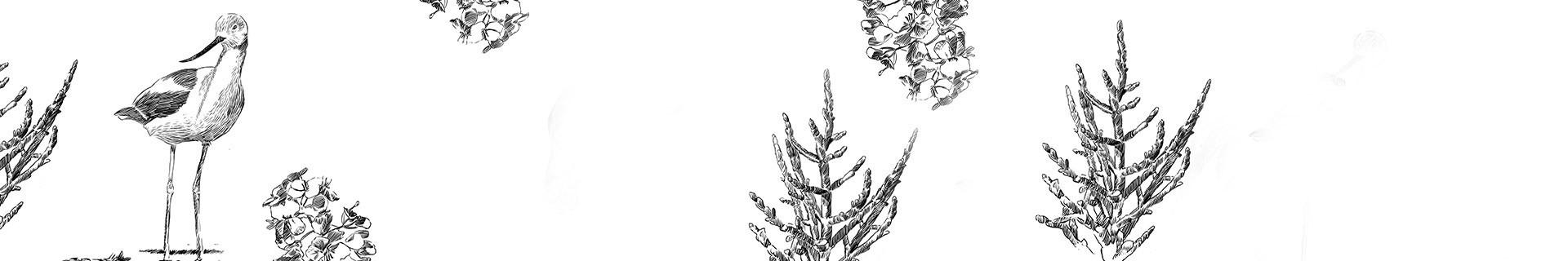 Les Moulins Sels Marins & Poivre, Produits Artisanaux | Les Sauniers de l'île de Ré