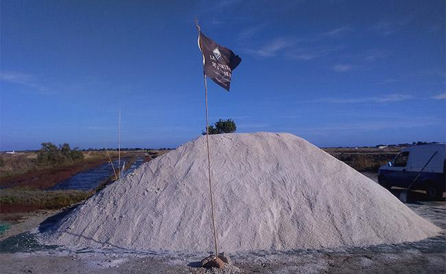 Charroi 2018: une année de récolte de sel record