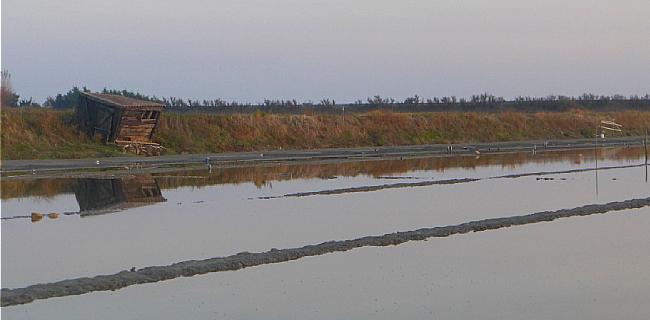 Marais salants de l'île de Ré en automne