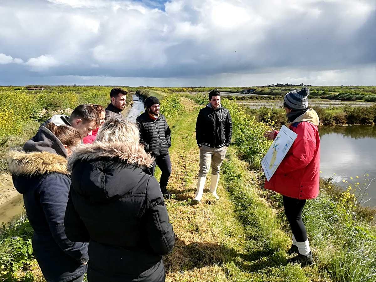 Visite de la Coopérative des Sauniers de l'île de Ré