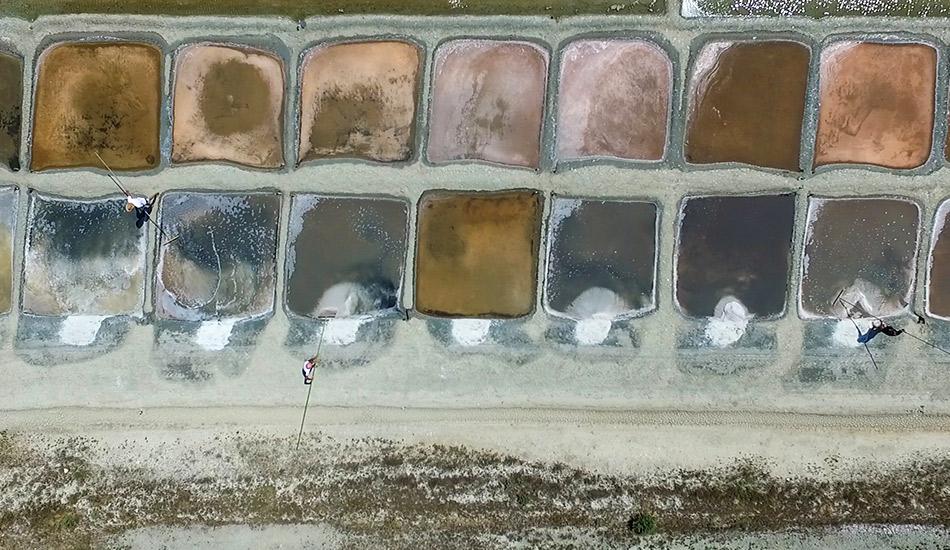 Vue de drone des marais salants
