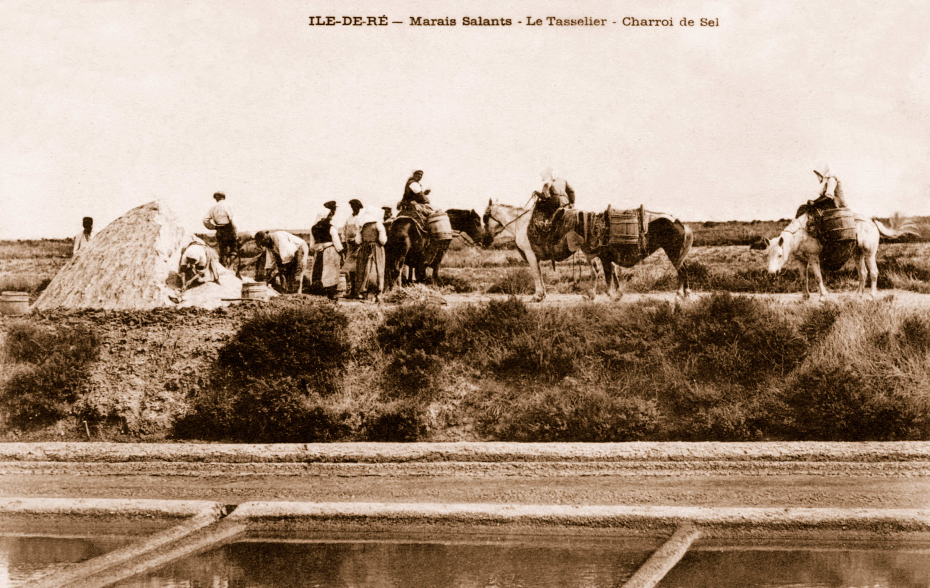 Photo des marais salants rétais en 1903