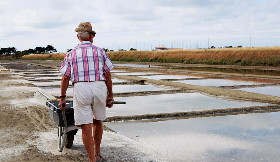 Fernand et sa brouette sur le marais salant