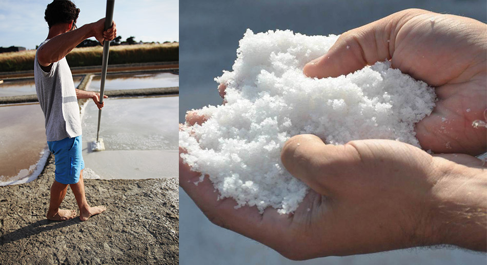 Notre savoir-faire autour de la récolte de sel